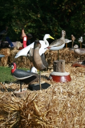 Wooden bird carvings on hay
