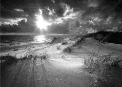 Black and white beach dunes