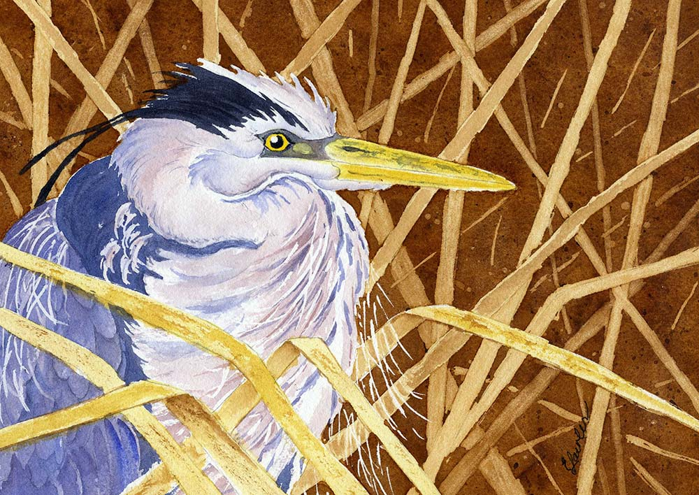 472 In The Reeds Web
