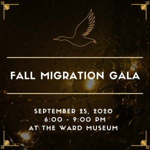 Fall Migration Gala Square
