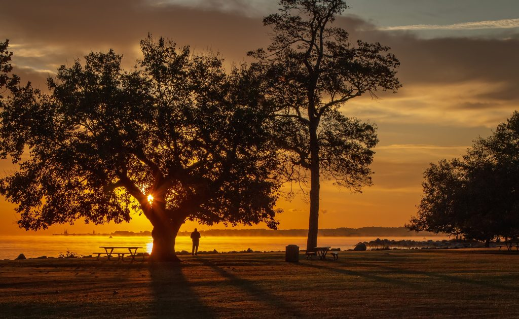 Humans in Nature- Honorable Mention - Watching the Sunrise by Barbara Houston